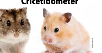 rpg_hamster1