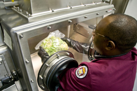 FDA Worker uses a glove box to examine lettuce