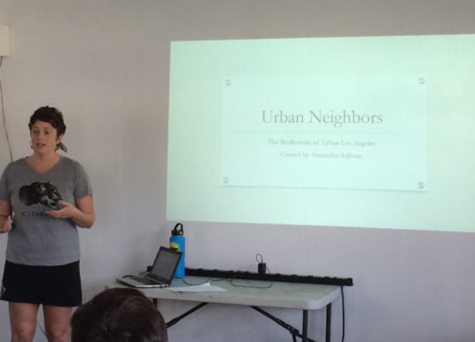 Urban Neighbors: The Biodiversity of Urban Los Angeles: Watch Online!