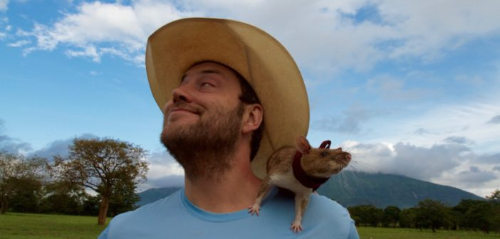 Andrew McGregor with rat perched all up ons him.