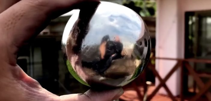 a shiny ball being held by the photographers left hand while outdoors in their back yard. Their reflection is vaguely visible.