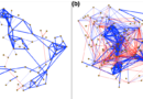 A Web of Maybes: Building and Using Co-occurrence Networks for Ecological Monitoring